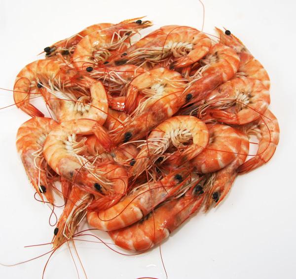 南美白对虾